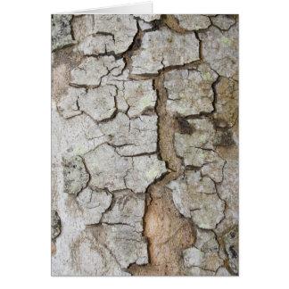 Tree bark texture card