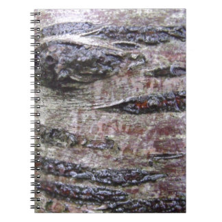 Tree Bark Texture Photo Notebook