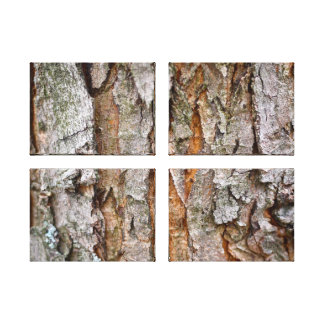 Tree Bark, Wood, Trees Forest Canvas Print