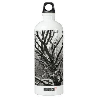 Tree Bedford Oak New York City Aluminum Water Bottle