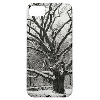 Tree Bedford Oak New York City iPhone 5 Case