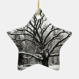 Tree Bedford Oak New York City Ceramic Ornament