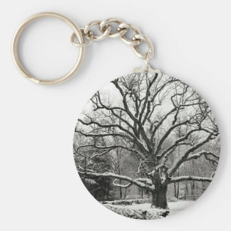Tree Bedford Oak New York City Key Chains