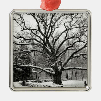 Tree Bedford Oak New York City Metal Ornament