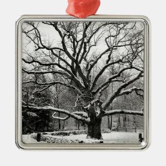 Tree Bedford Oak New York City Christmas Tree Ornament