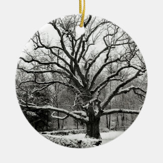Tree Bedford Oak New York City Ornaments
