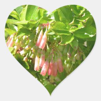 Tree Blooms - Vaccinium Cylindraceum Heart Sticker
