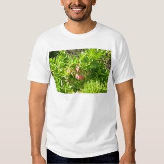 Tree Blooms - Vaccinium Cylindraceum Shirt