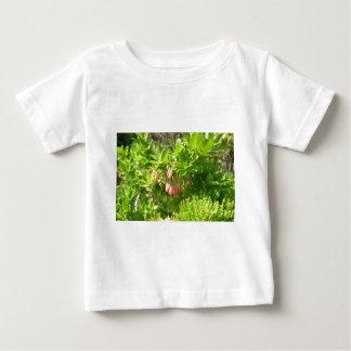 Tree Blooms - Vaccinium Cylindraceum T-shirt