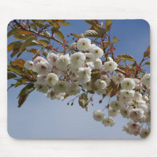 Tree Blossom beautiful pink and whites Mouse Pad