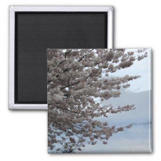 Tree Blossom Fridge Magnet