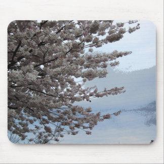 Tree Blossom Mouse Pad