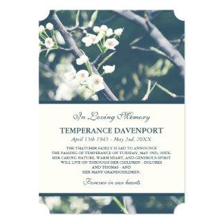 Tree Blossom   Spring Memorial Announcement