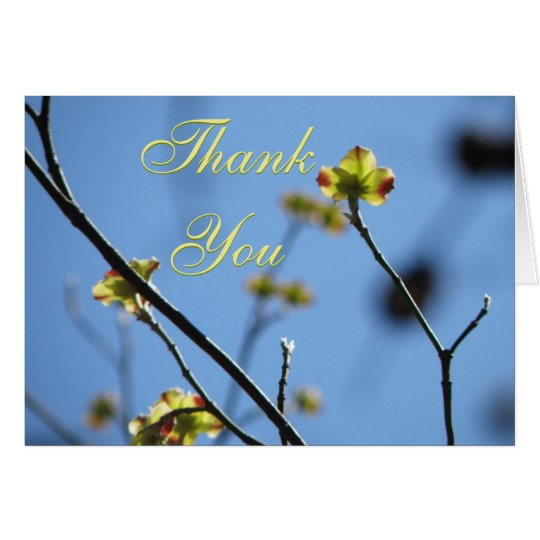 Tree Blossom Thank You Card
