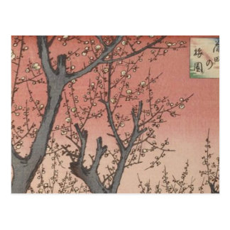 Tree Blossoms Plum Garden Japanese Woodblock Postcard