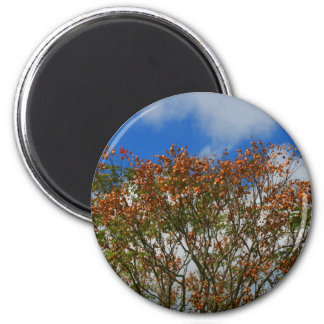 Tree Blue Sky Orange Flowers Image 2 Inch Round Magnet