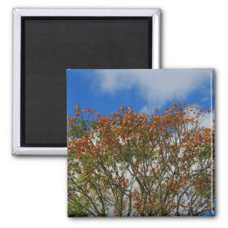 Tree Blue Sky Orange Flowers Image 2 Inch Square Magnet