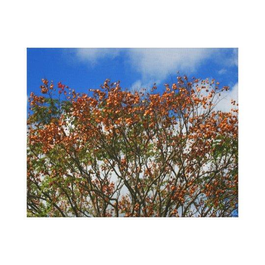 Tree Blue Sky Orange Flowers Image Canvas Print