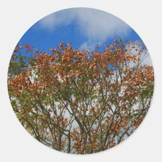 Tree Blue Sky Orange Flowers Image Sticker