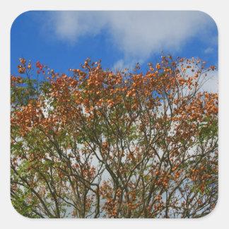 Tree Blue Sky Orange Flowers Image Stickers