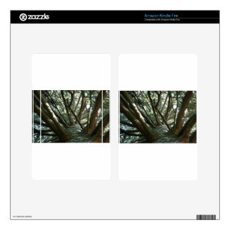 Tree Braches Nature Kindle Fire Skins