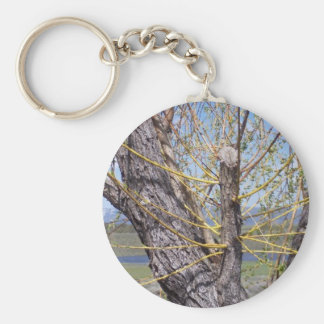 Tree Branch Sprouts Basic Round Button Keychain