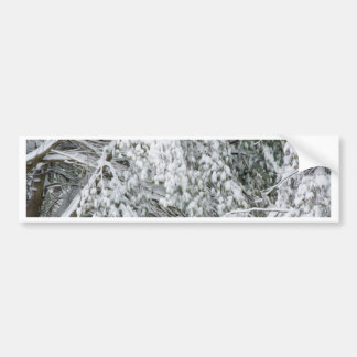 Tree branches after heavy snowfall bumper sticker