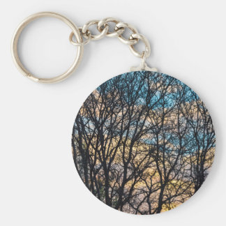 Tree Branches and Colorful Clouds Keychain