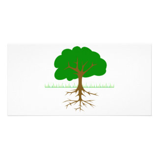 Tree Branches and Roots Card