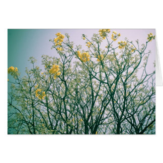 Tree Branches and Yellow Blossoms Greeting Card