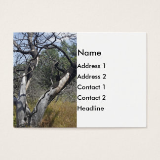 Tree Branches: Angel Live Oak Tree, Southern Texas Business Card