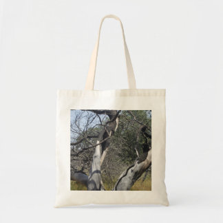 Tree Branches: Angel Live Oak Tree, Southern Texas Tote Bag