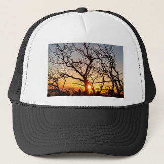 Tree Branches Dancing In The Sunlight Trucker Hat