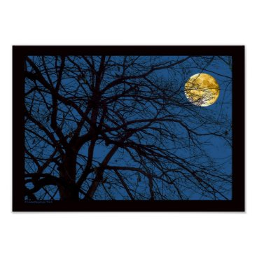 linda_mn Tree Branches Full Moon Poster
