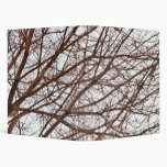 Tree Branches in Fall Vinyl Binder