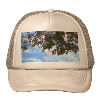 Tree Branches in the Wind Trucker Hat