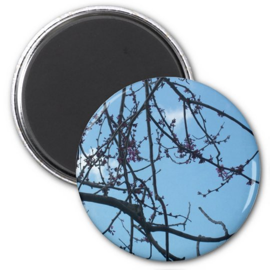 Tree Branches Magnet