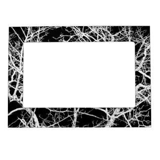 Tree branches on black background magnetic frame