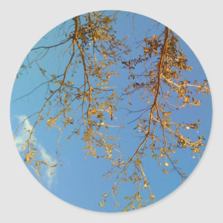 Tree Branches Round Stickers
