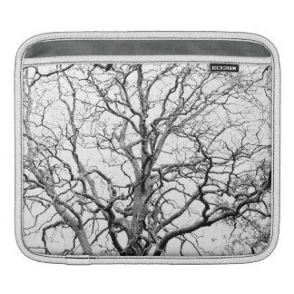 Tree branches sleeve for iPads