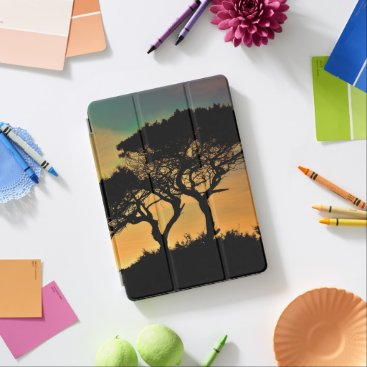Professional Business Tree Branches Sunset Blossoms Destiny's Destiny iPad Pro Cover