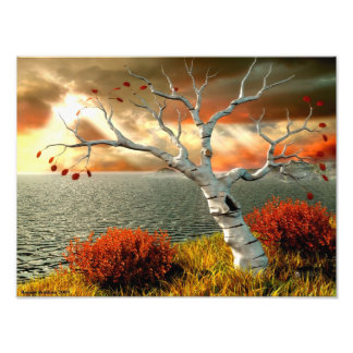 Tree by the Ocean Photo Print