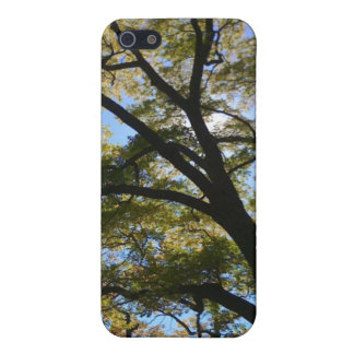 Tree Canopy Cover For iPhone SE/5/5s