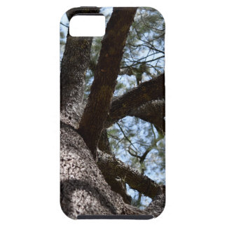 TREE CANOPY EUNGELLA NATIONAL PARK AUSTRALIA iPhone SE/5/5s CASE