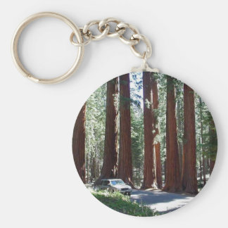 Tree Car Sequoia Park Keychain