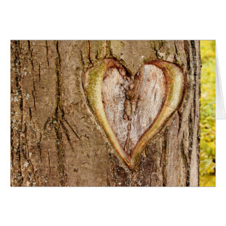 Tree Carved Heart Valentines Day Card