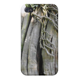 tree case for iPhone 4