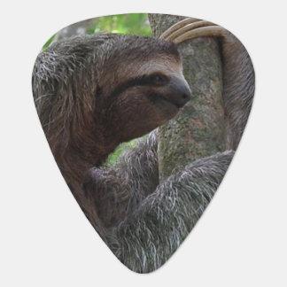 Tree Climbing Sloth Guitar Pick