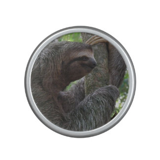 Tree Climbing Sloth Bluetooth Speaker