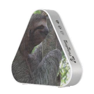 Tree Climbing Sloth Speaker